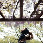 model: 樹乃